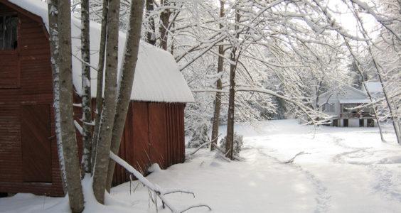Snow in Clendenin 2015